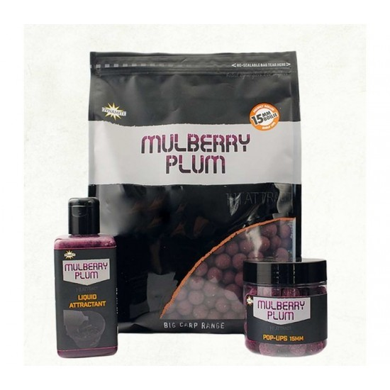 Dynamite Baits Mulberry Plum Hi-Attract Boilies 1kg